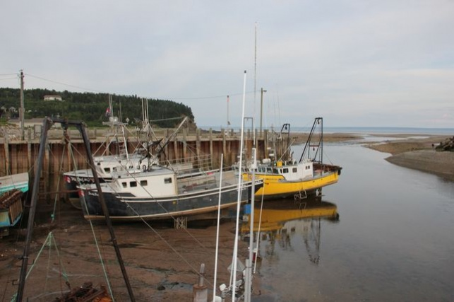 Alma Harbour - New Brunswick